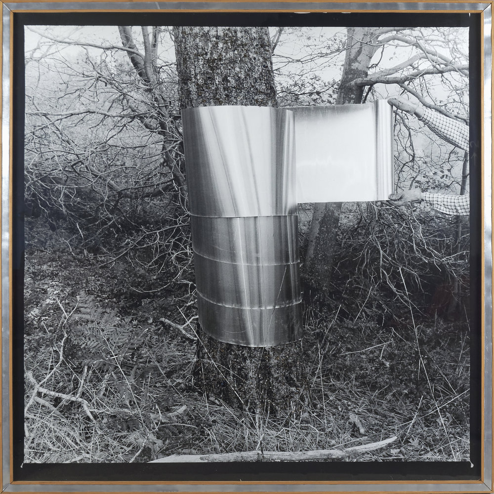 """Das Waldsterben 2,"" 1984, silver gelatin print, magnets,  metal shavings, wood, sheet steel, edition 1 of 1, 42 x 41 inches"