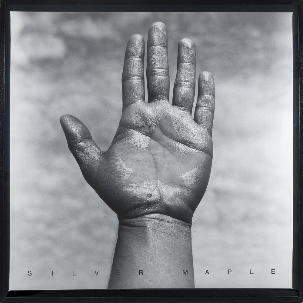 """Silver Maple,"" 1987, silver gelatin print, letter transfers, edition 3 of 7, 40 x 40 inches image size"
