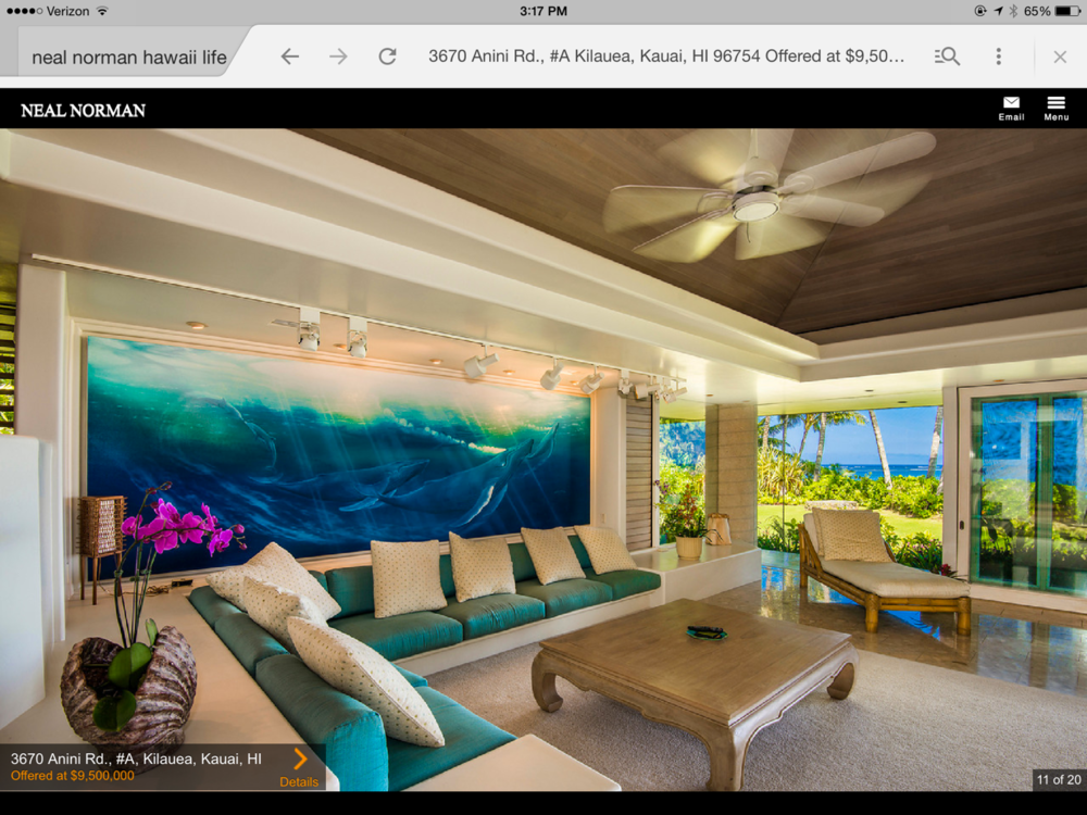 Kauai Home Painting