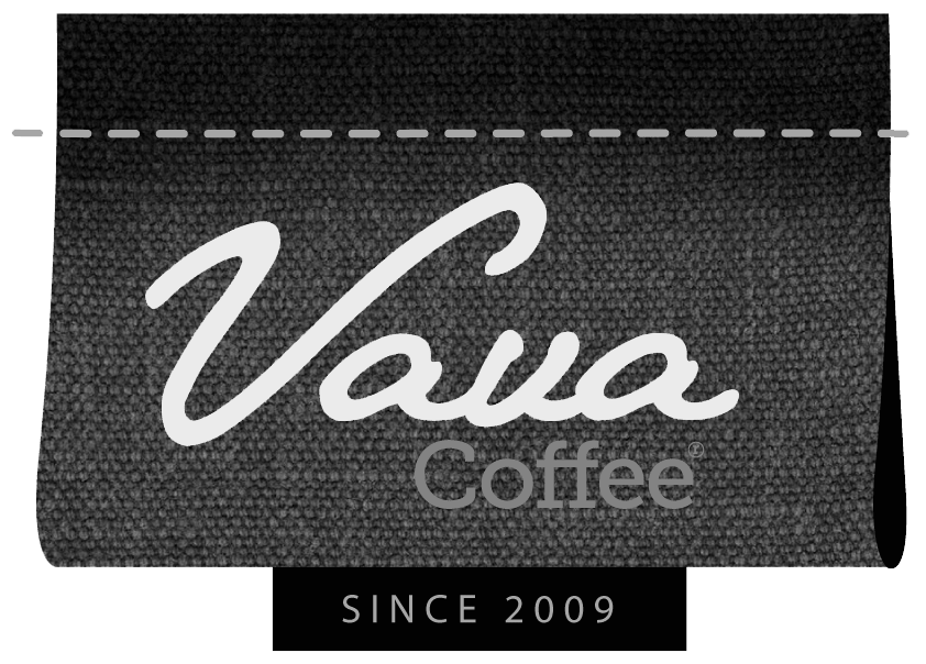 vava_logo_poster.png