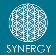 Synergy Health Group