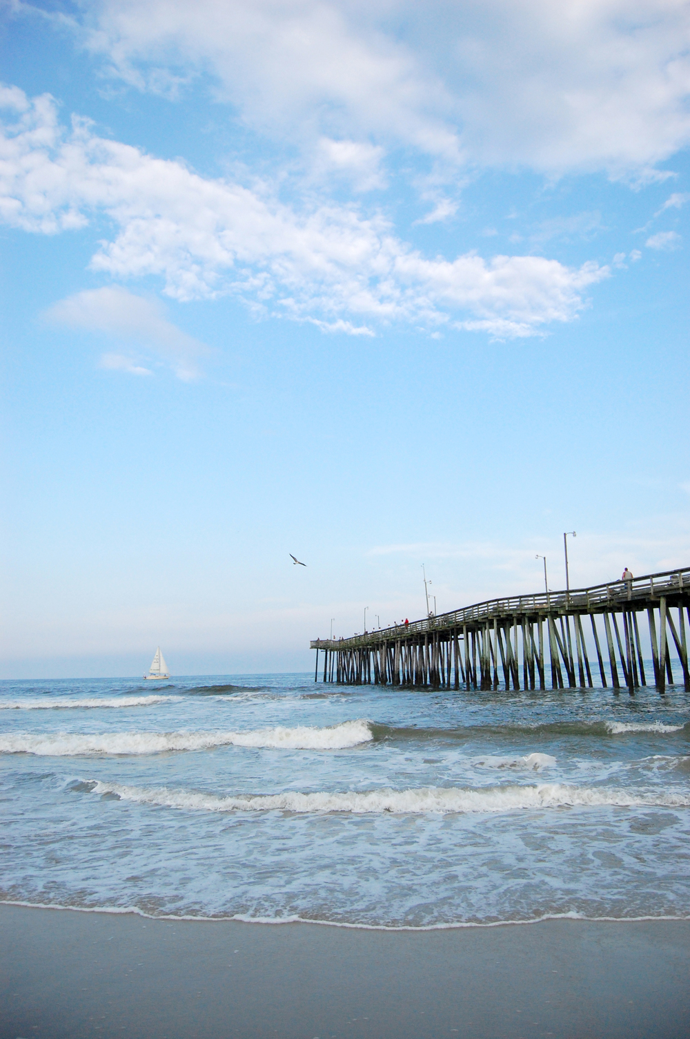 <style> .virgina beach photography { display: none } </style>