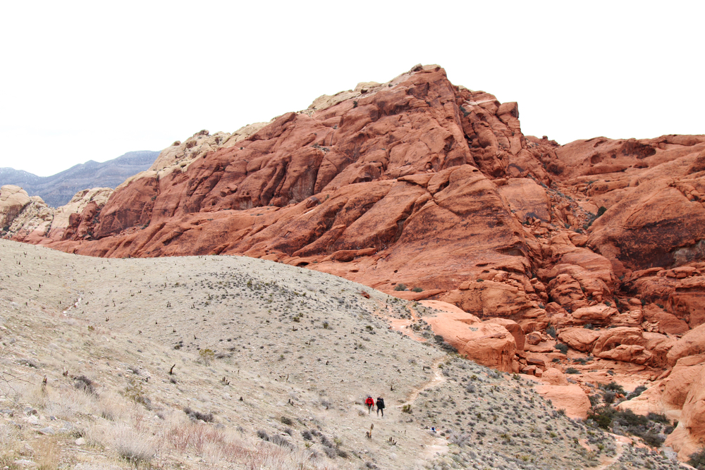 <style> .red rock photography { display: none } </style>