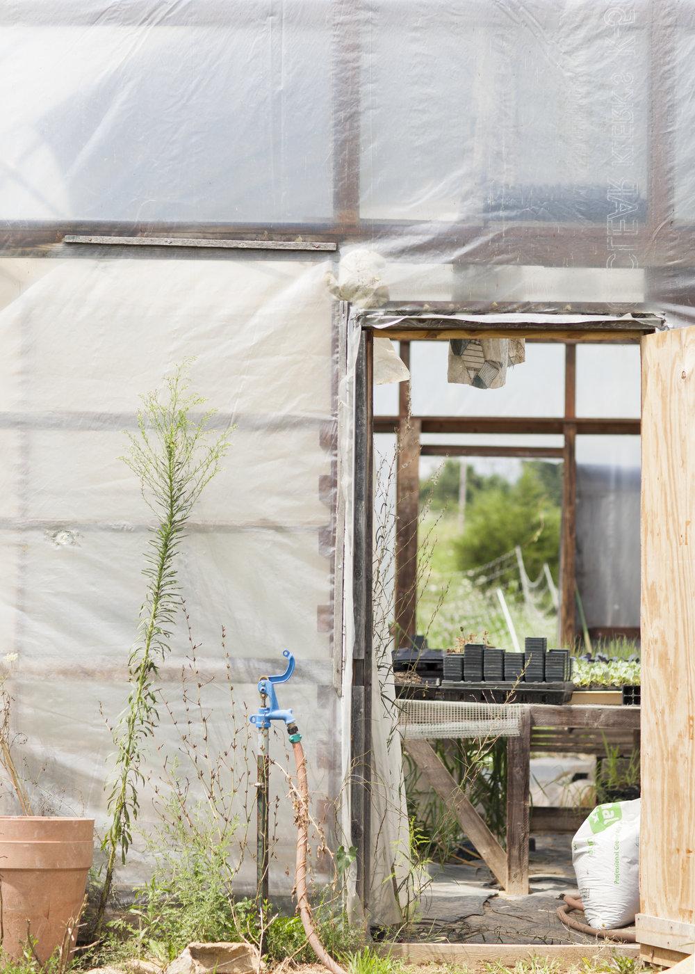 7 Greenhouse1.jpg