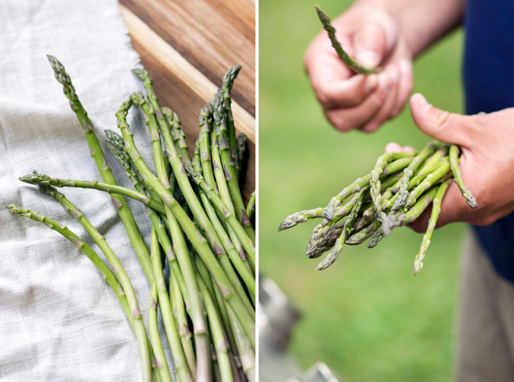 Cincinnati Food Lifestyle Photographer | Grilled Asparagus | Allison McAdams.jpg