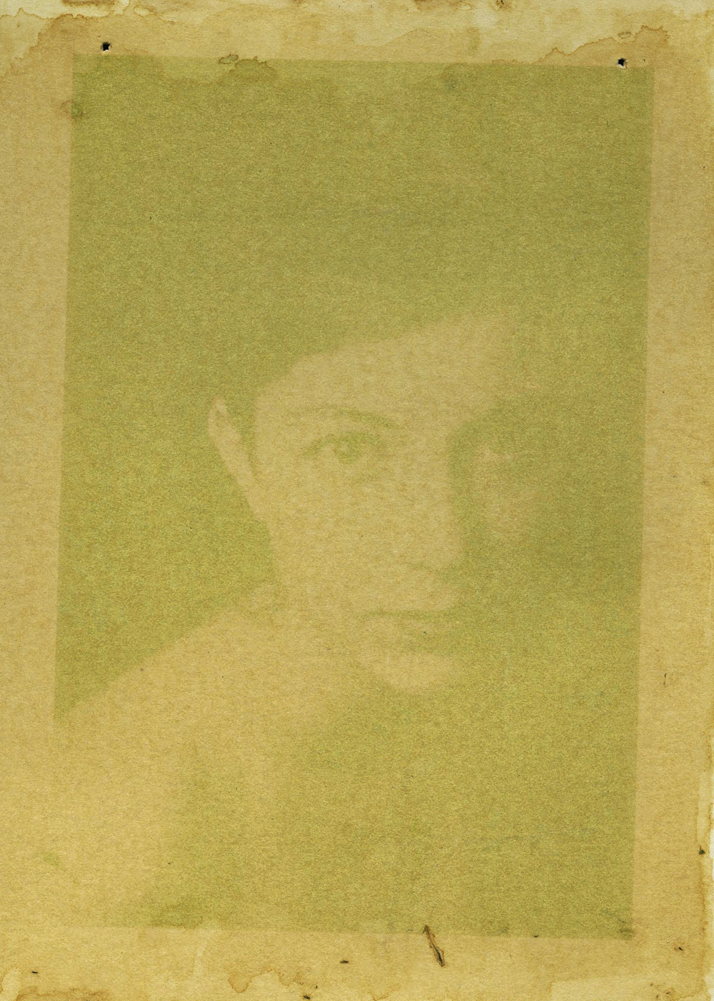 Taylor, Spinach emulsion anthotype, 2014