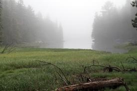 Hog Island in Mist.jpg