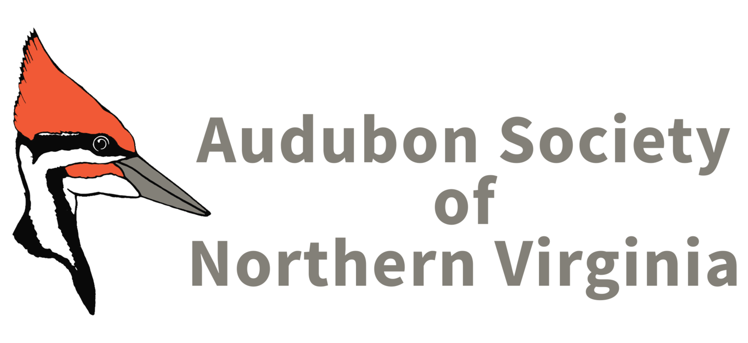 Audubon Society of Northern Virginia