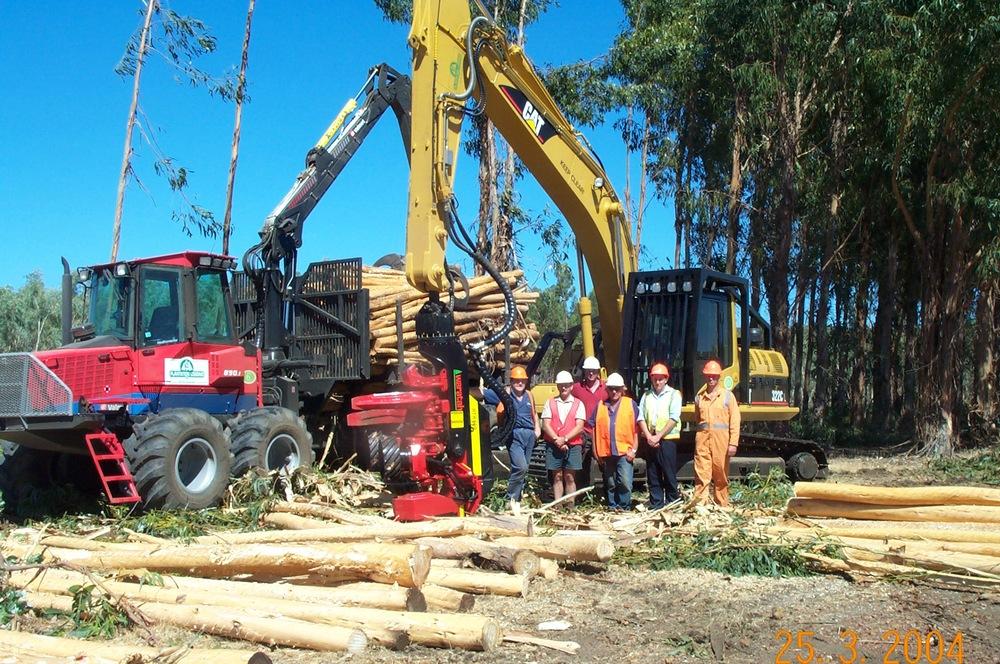 Waratah - Plantation Logging - 2.jpg
