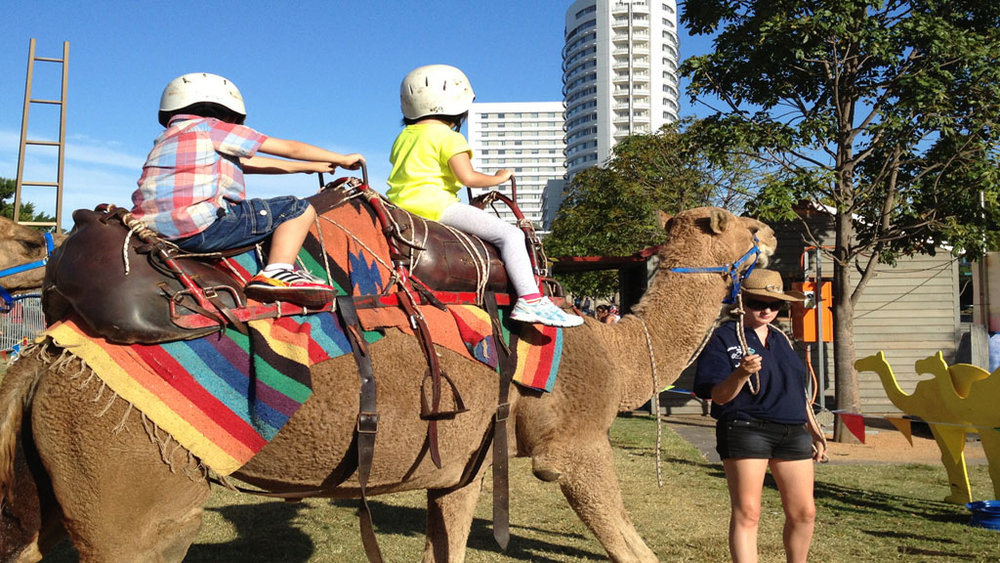 Camel Ride - Take a ride on this majestic animal that has crossed the world's deserts for thousands of years. A camel ride is a great idea for each little adventurer to view the carnival atop a camel's back.