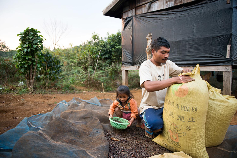 Laos coffee | Den Zepick Photography