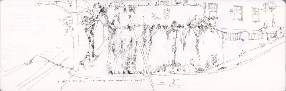4-hedge.jpg