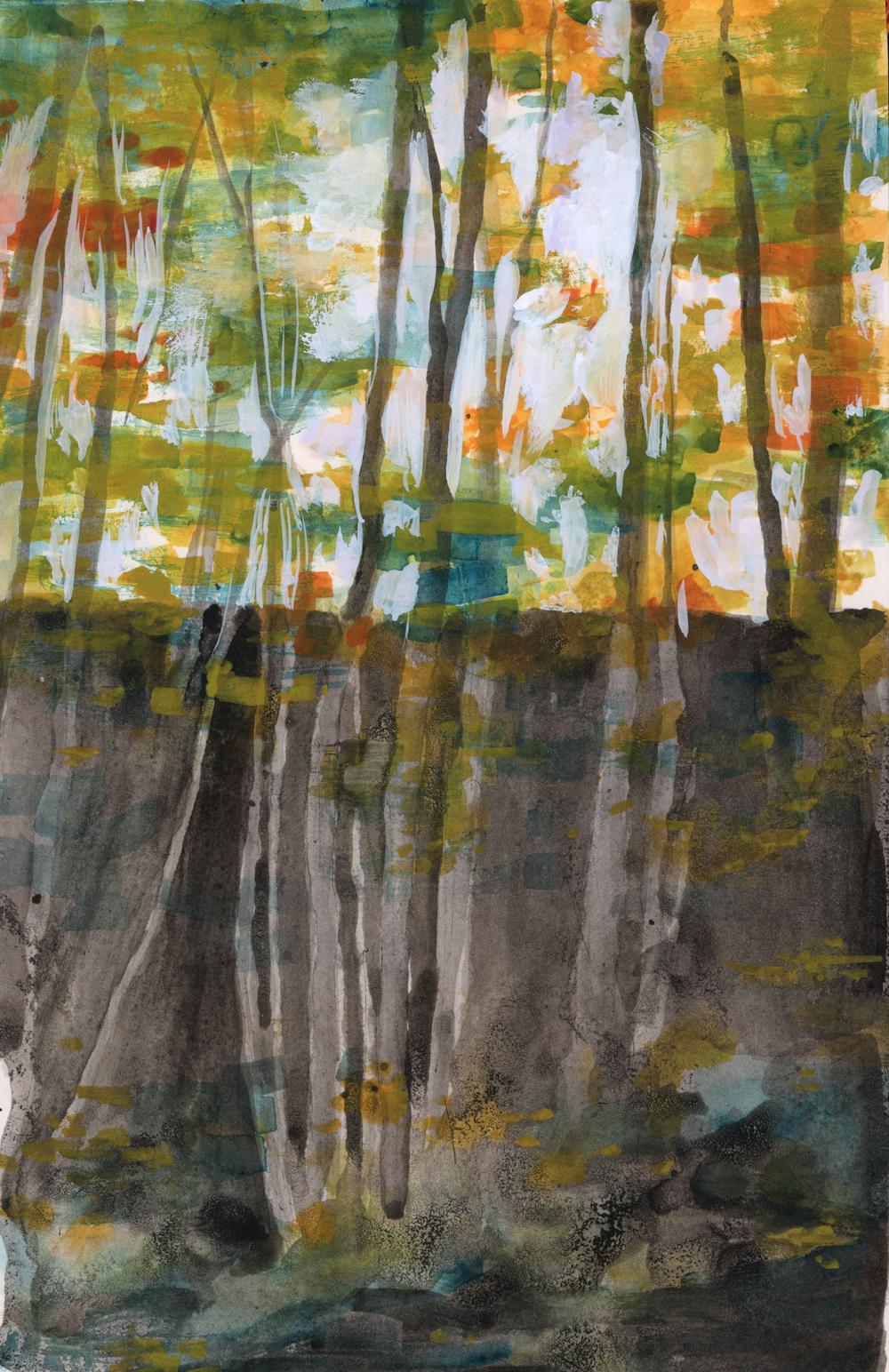 8-forest-2.jpg