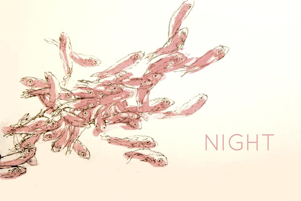 10-night.jpg