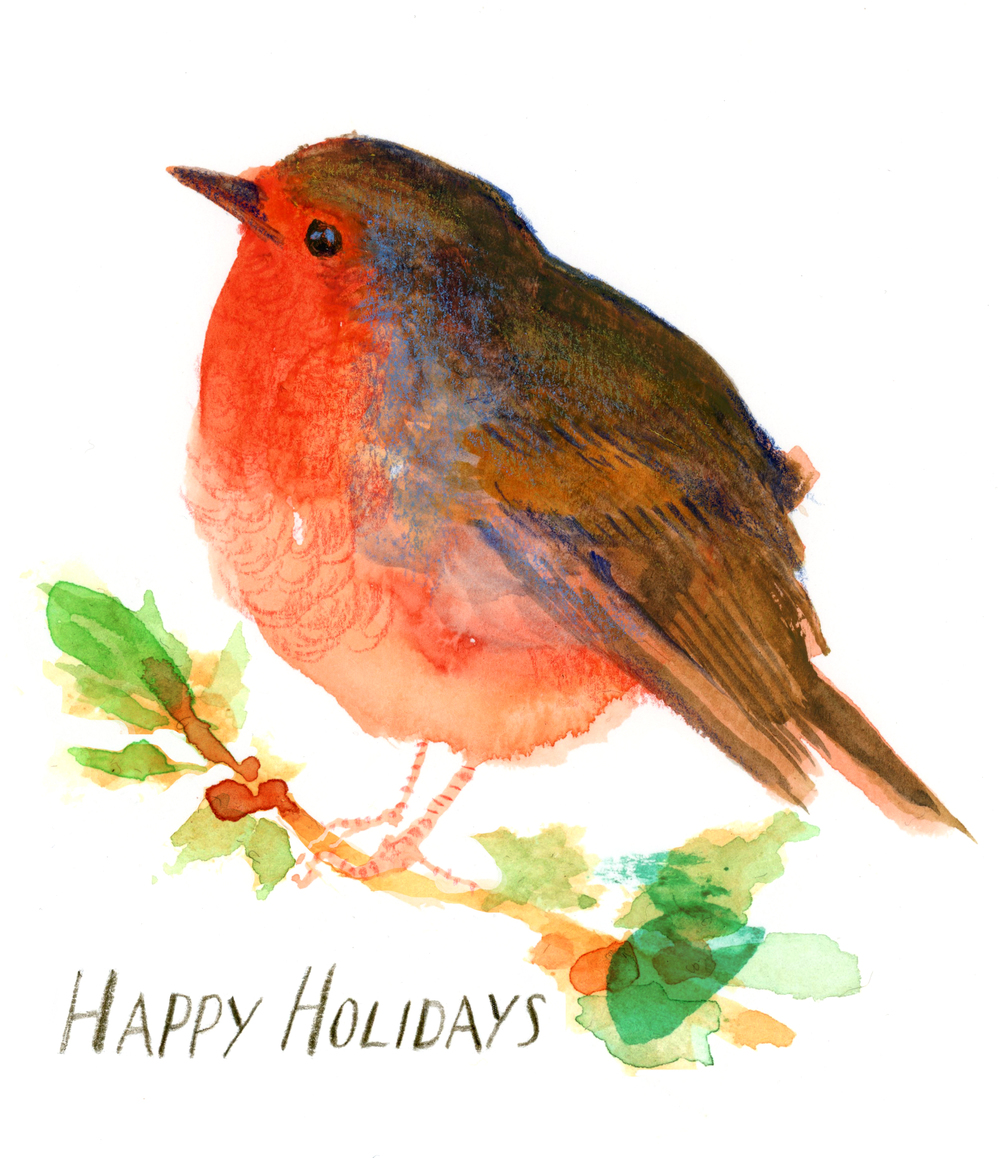 HOLIDAY-bird-wide-2.jpg