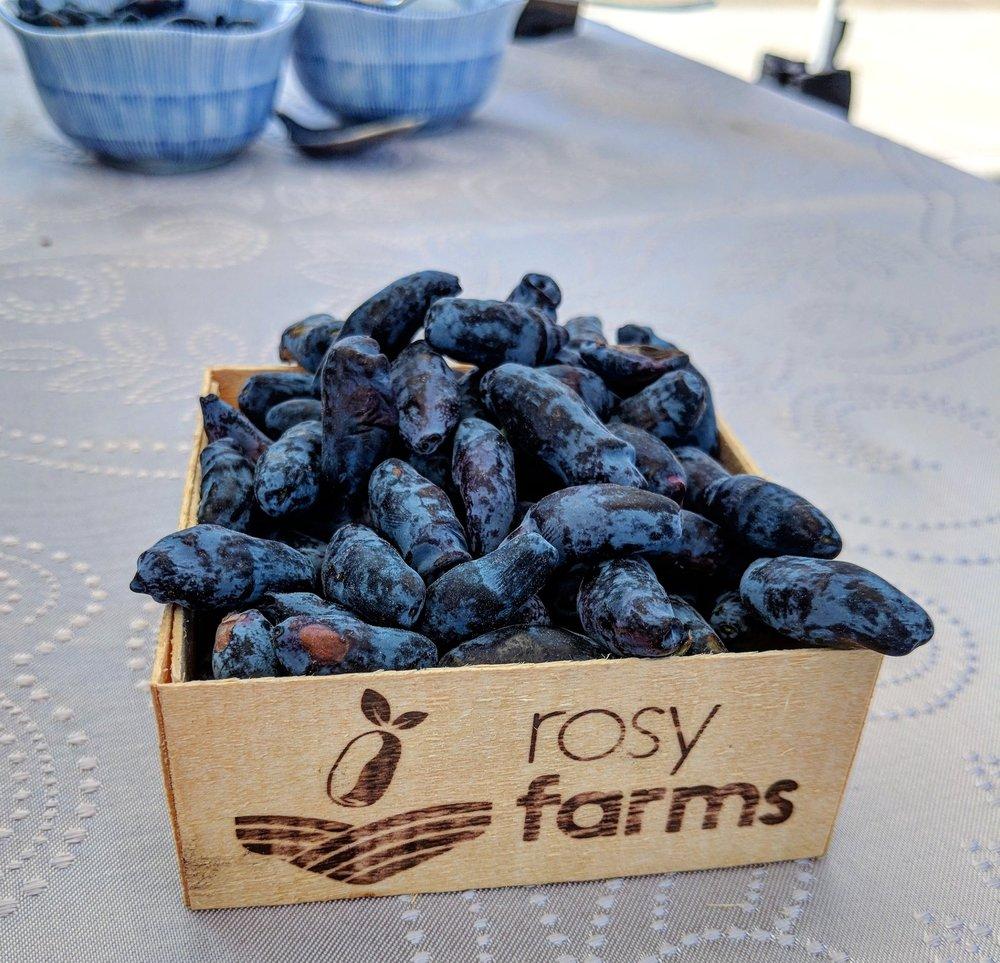 rosy farms haskaps fruit local superfood.jpg