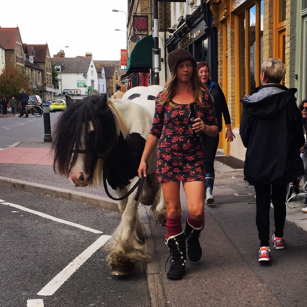 It is always polite to dismount one's horse whilst sharing the sidewalk with foot traffic.