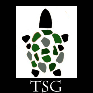 The Turtlestone Group