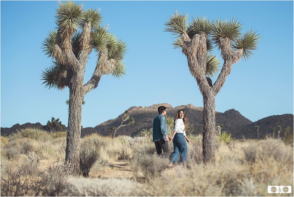 Joshua-Tree-National-Park-Engagement (10).jpg