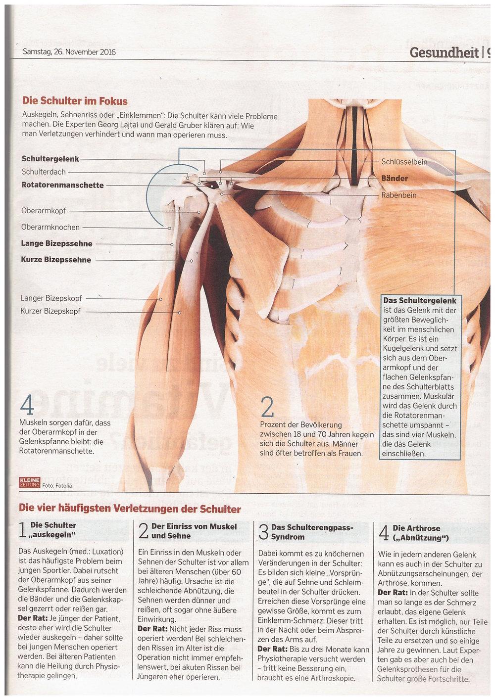 Gemütlich Anatomie Der Schultermuskulatur Und Sehnen Fotos ...