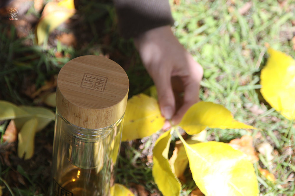 Yellow leaves and tea bottles