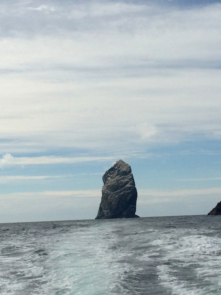 A final look back at Stac Lee off Boreray as we head home. It is home to the largest gannet colony in the UK with around 60,000 nesting pairs. Thank you Derek and your Gotostkilda team for a fantastic day out.