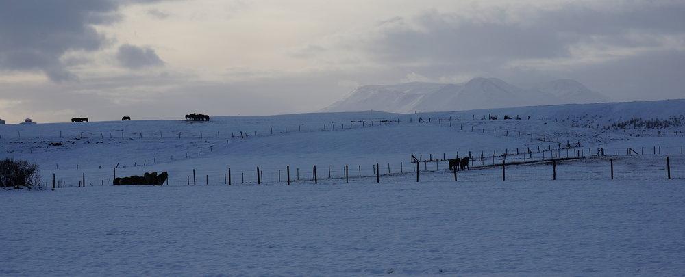 Blönduós, Northern Iceland.