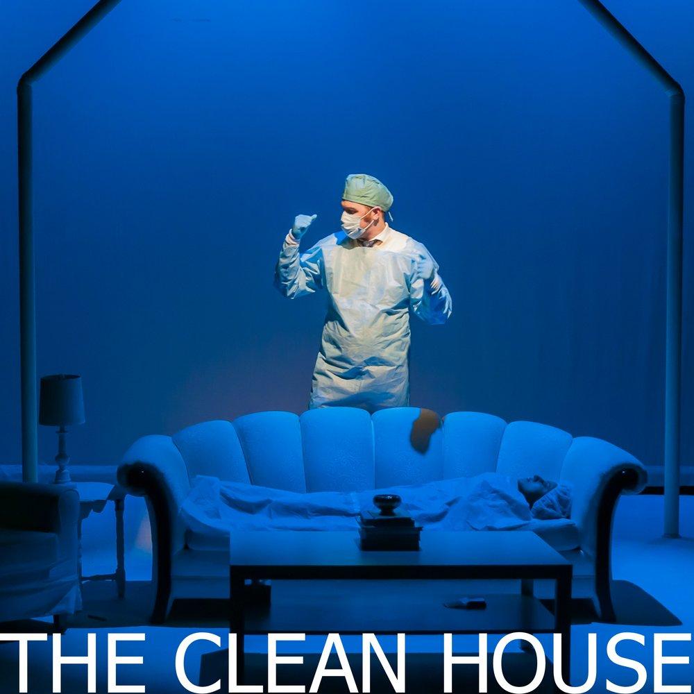 clean house ss.jpg
