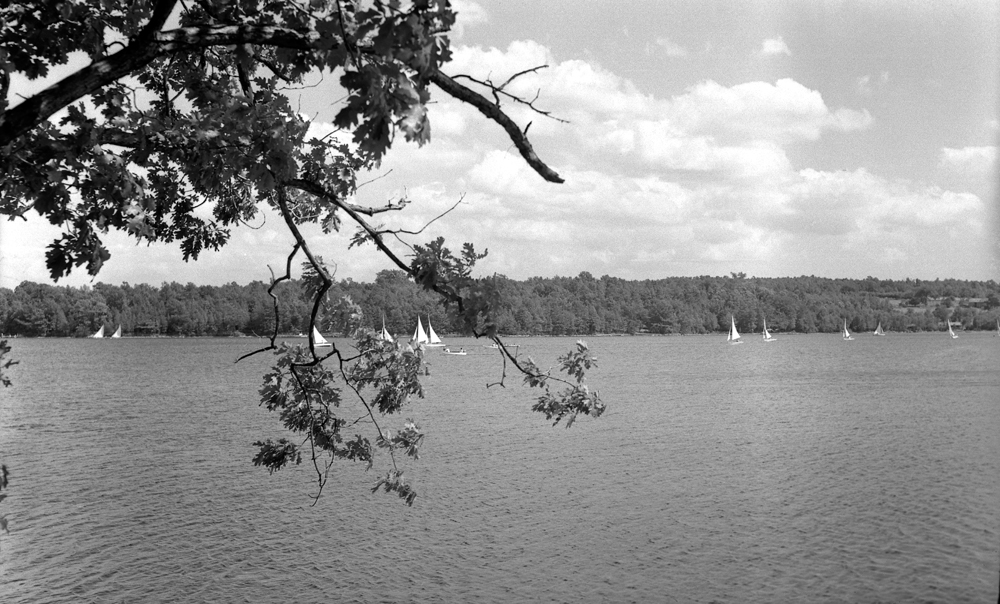 View of Lake & Sailboats.jpg