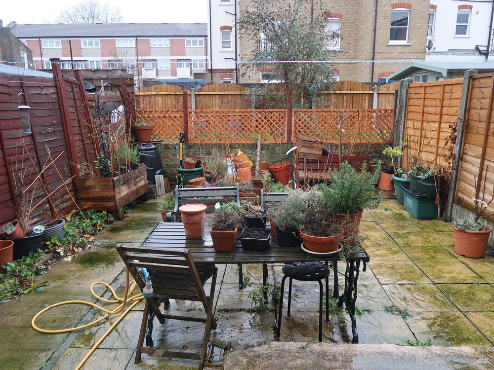 Our garden in January 2018 in the middle of winter. Not a good look!