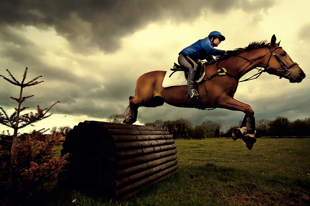 horse-jumping-SS.jpg