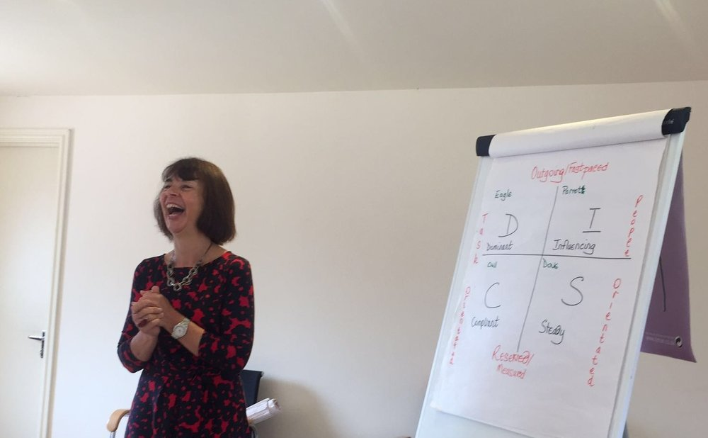 HALF DAY WORKSHOP - Using DISC personality profiling to build positive working relationships.