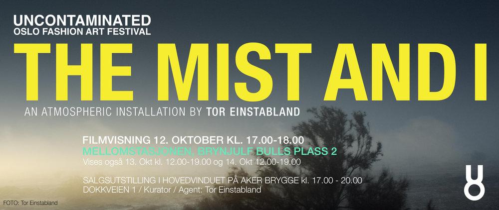 Tor Einstabland copy.jpg