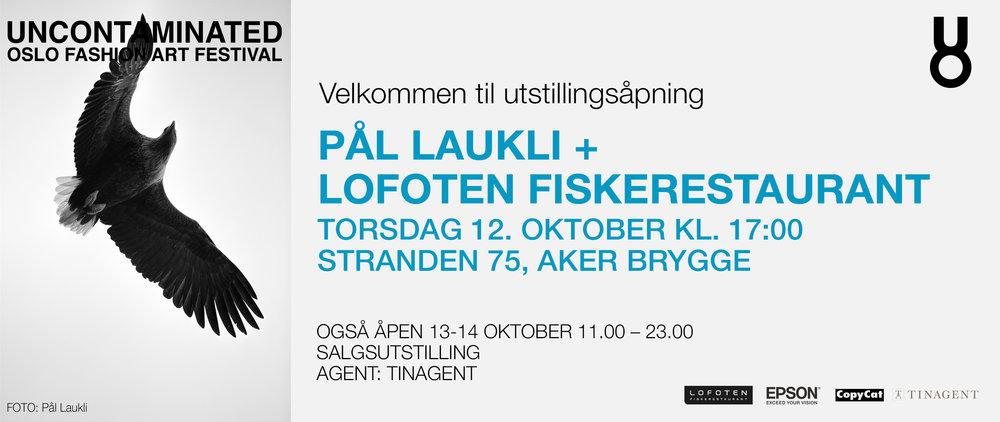 Pål Laukli + Lofoten.jpg