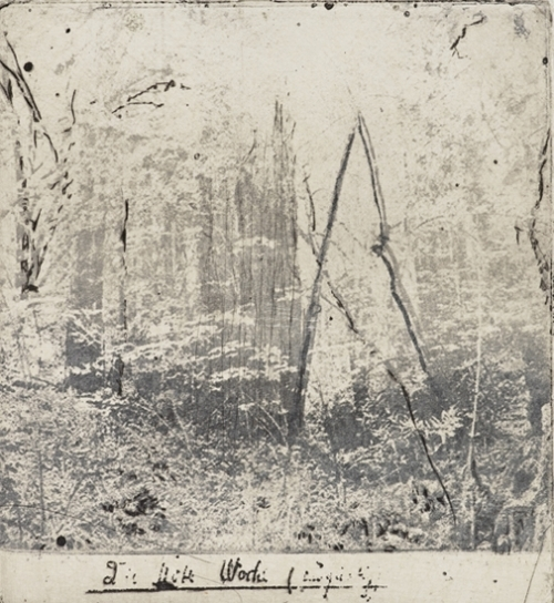 "Bartholomew Park,  2017 photo etching, dry point image size:  5 ½"" x 5 1/2"