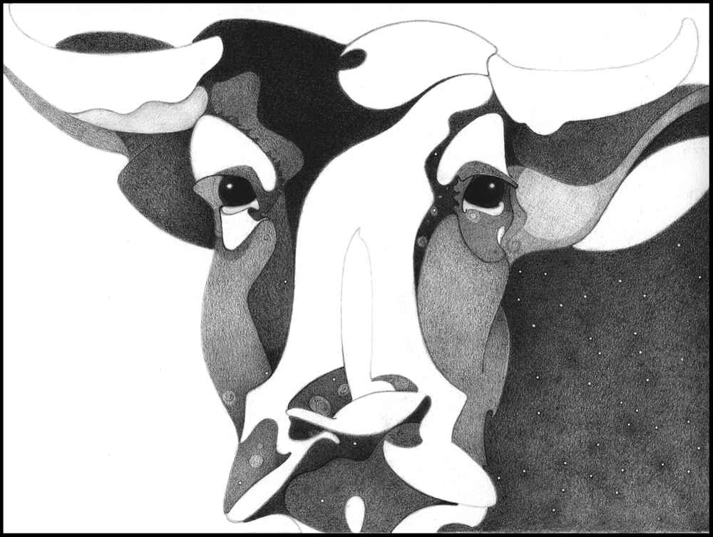 Cosmic Cow Series LightDark, Graphite Drawing, copyrighted by Kathleen Zimmerman
