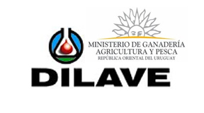 dilave.jpg