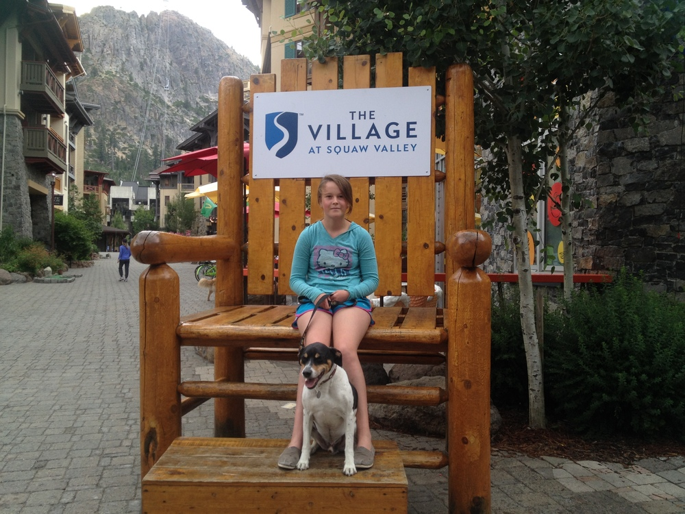 Dog Days In Tahoe Finding Half Full