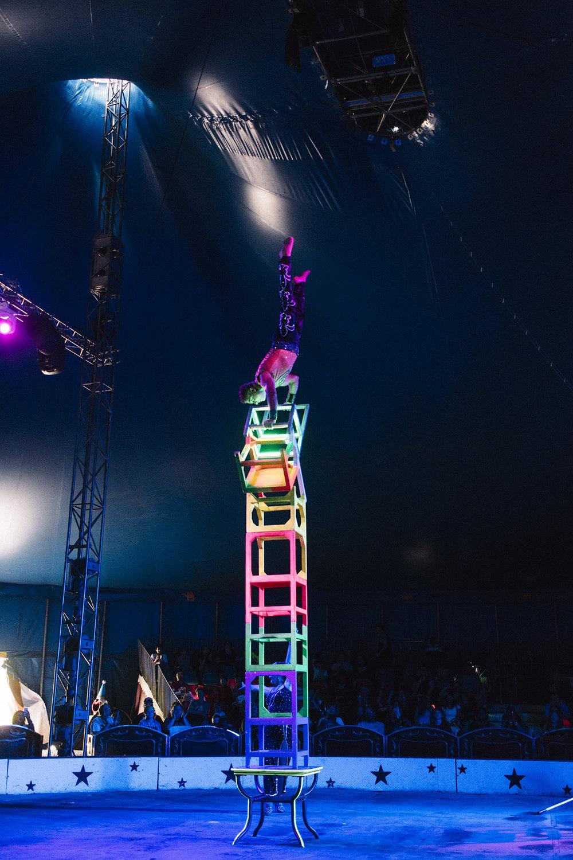 CircusWorld_Baraboo_06242017_179 copy.jpg
