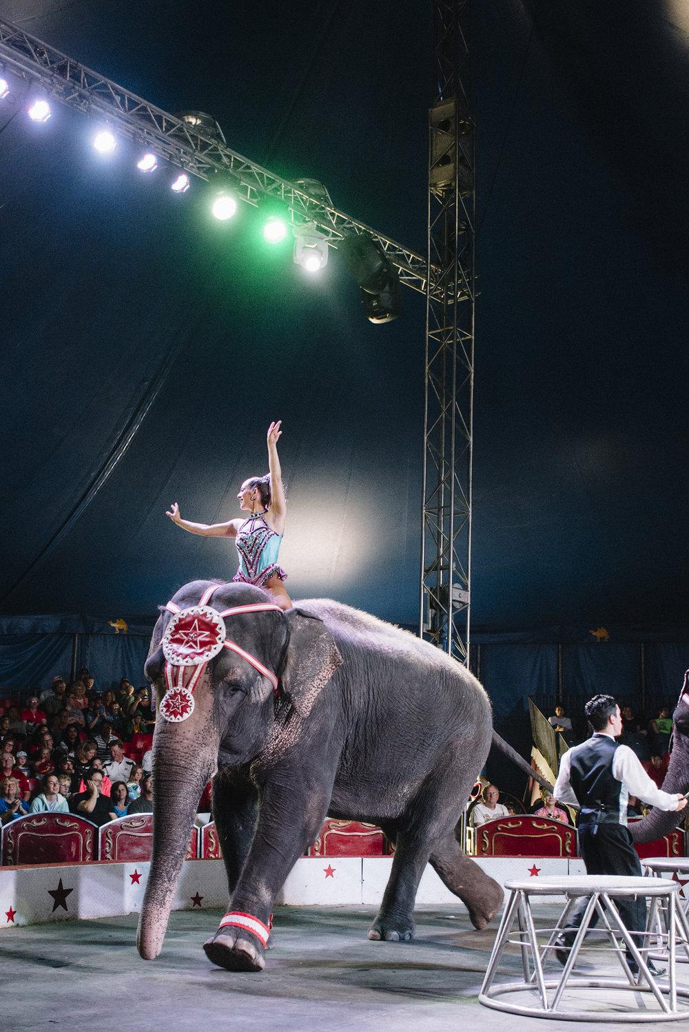 CircusWorld_Baraboo_06242017_185.jpg