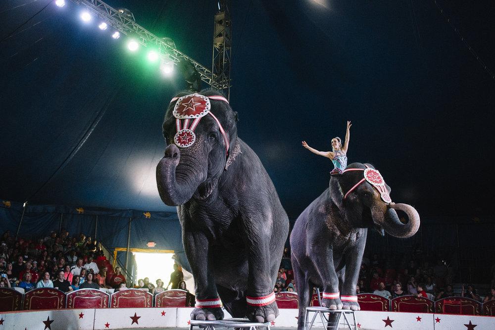 CircusWorld_Baraboo_06242017_195.jpg