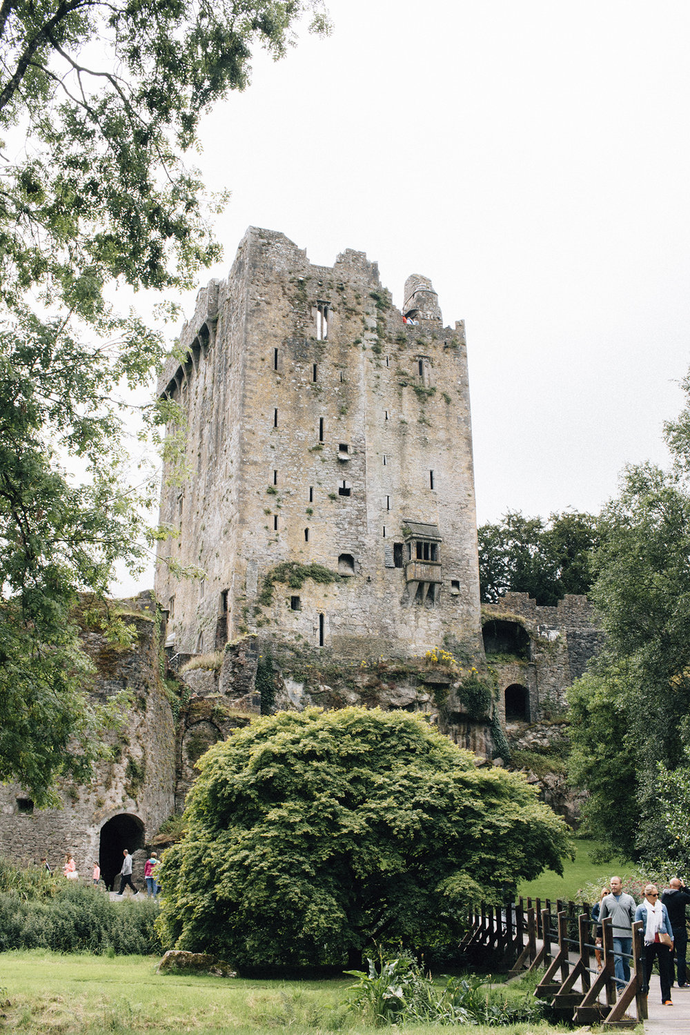 Blarney Castle & House - Walking through the grounds of Blarney Castle, and subsequently, Blarney House, it's easy to lose yourself in the grander of hidden pathways and ancient architecture.