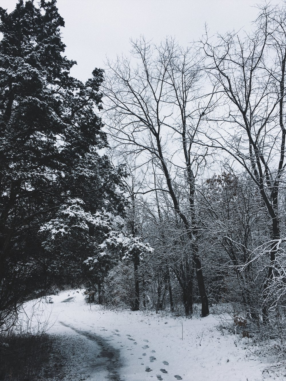 winter in wisconsin