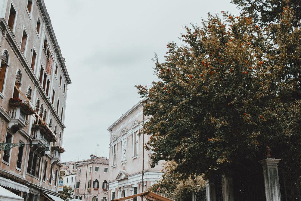 Venice_06032016_058.jpg