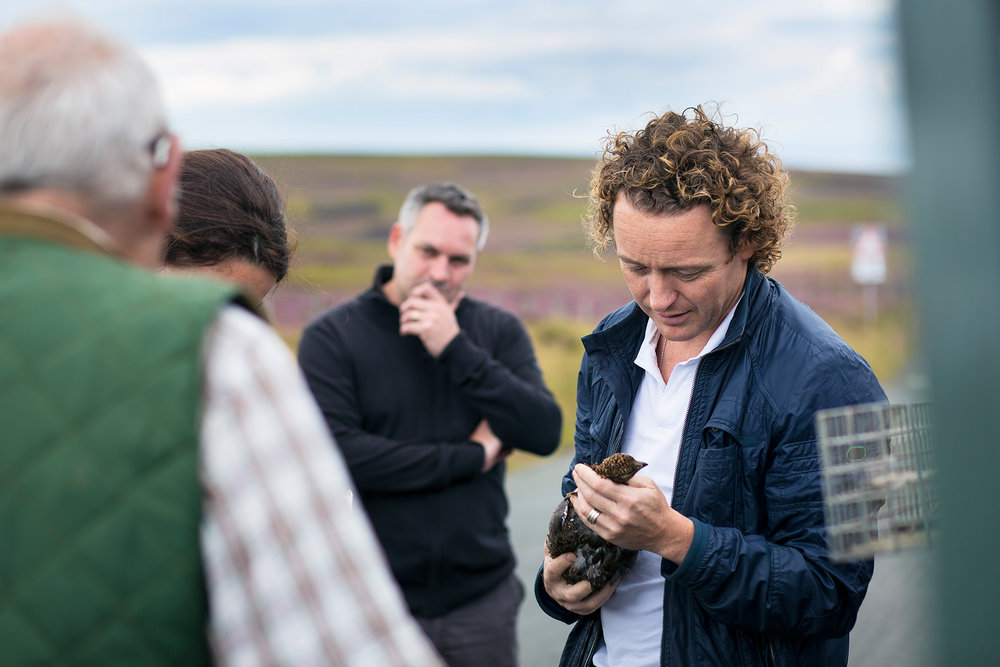 Tom Kitchin, Lammermuirs Estate August 12th 2017