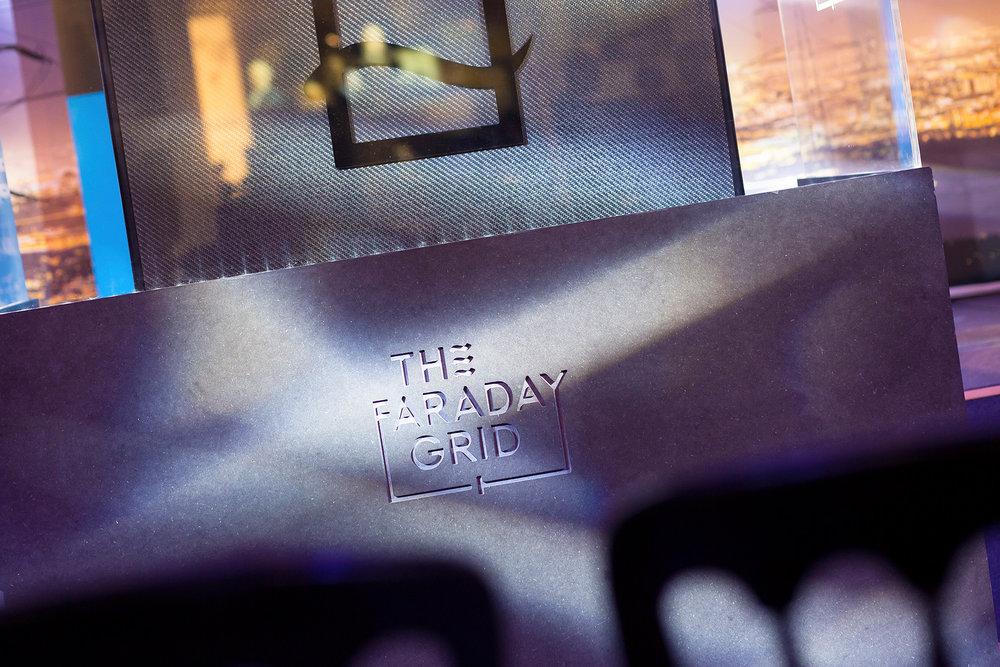 FaradayGrid_LowRes_002.jpg