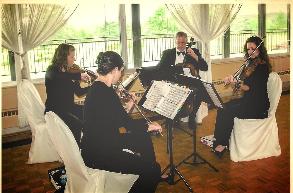 Sophisticated Strings.jpg