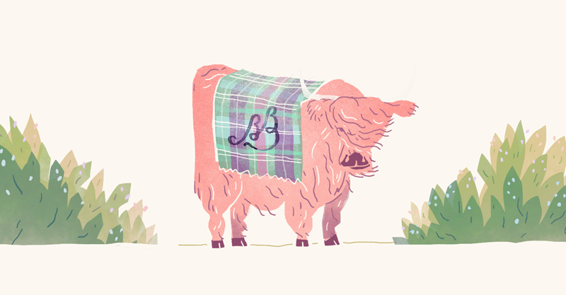 Part of the Save the Date featuring a Highland Cow found in the weddings locale: Scotland.