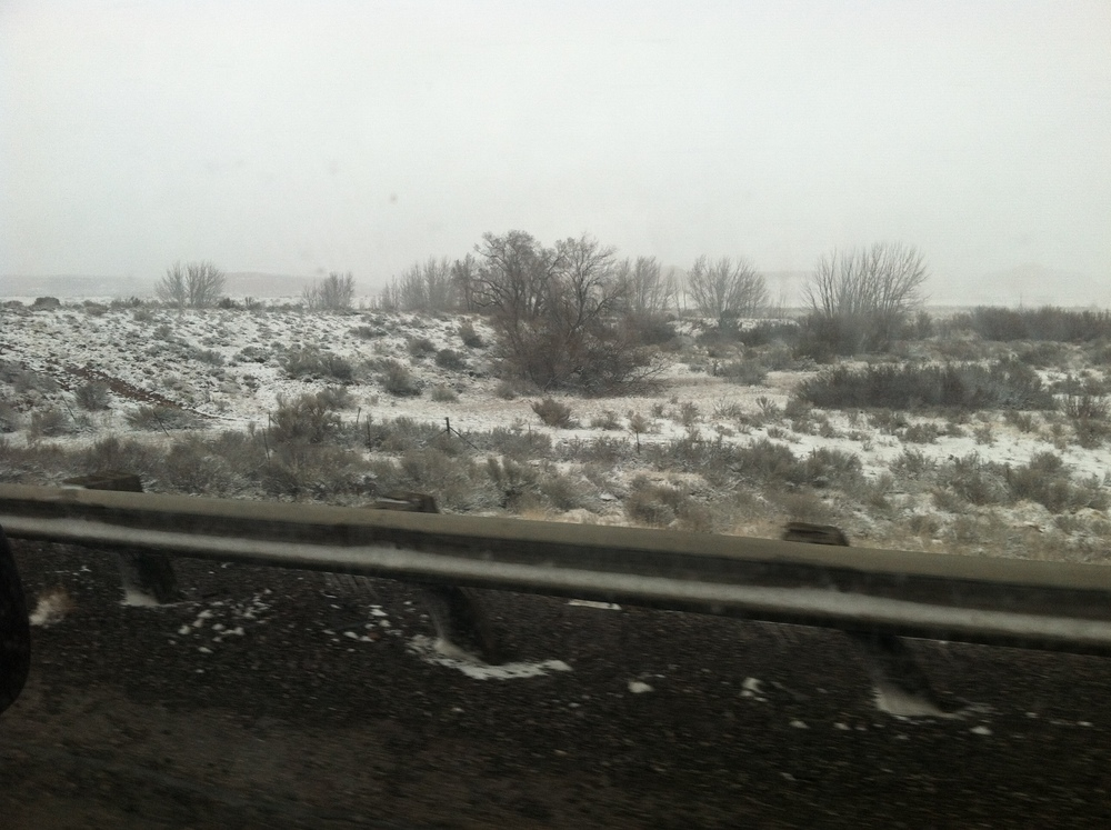 The Snow Begins in New Mexico