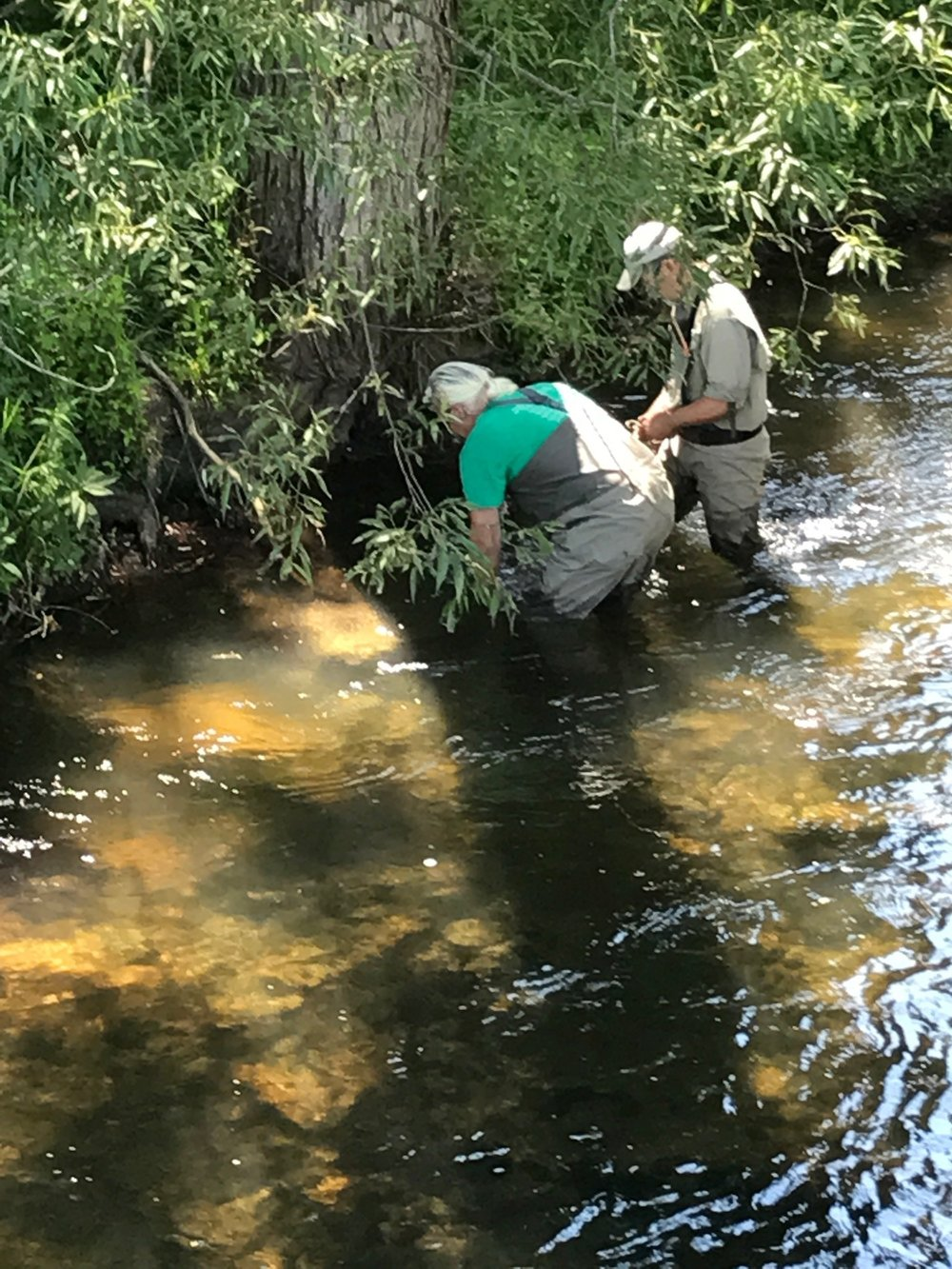 Chairman Matt Pollard and member Don Meyer work to deploy temperature monitors in the Rifle River
